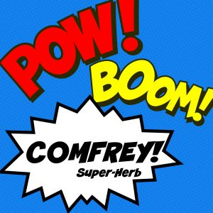 Comfrey is the superhero of the medicinal herb world! It can double the rate of cell growth for rapid healing of wounds.