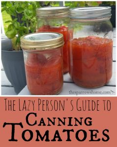 If you are interested in canning tomatoes without all the fuss...this is perfect!