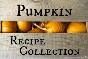 A collection of pumpkin recipes from classically traditional to creatively original.