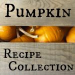 A collection of 16 pumpkin recipes from classically traditional to creatively original.