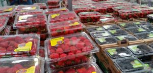 Costco has the best price on berries! They are on my list of things I always pick up when I'm there.