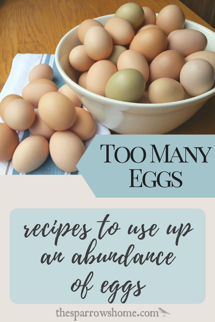 When we had backyard chickens I always had more eggs than I knew what to do with. This is a fantastic collection of recipes for when you have LOTS of EGGS!