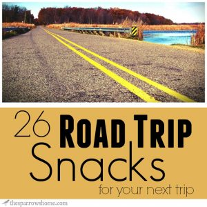 I am always looking for snacks that travel well for our summer road trips. This is a great list!