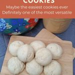 Easy. Frugal. Versatile. Freezer friendly. Delicious. These easy cookies are made with sweetened condensed milk and are the perfect blank slate for customizing.