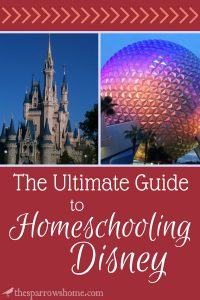 Are you looking for ways to incorporate your trip to Disney World into your studies. Ideas for literature, history, and loads more to homeschool Disney!