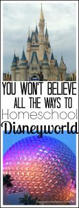 Loads of ways to incorporate your trip to Disneyworld into your homeschool studies. Ideas for literature, history, and more!