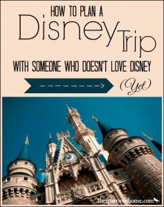 The best advice for planning a Disney trip with someone who's maybe not as excited as you are.