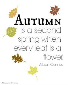 Printable Fall Poetry. Remind yourself to savor this beautiful season.
