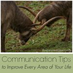 Want to have more pleasant communication, get better results, & have less arguments? These tips are sure to make you a more effective communicator.
