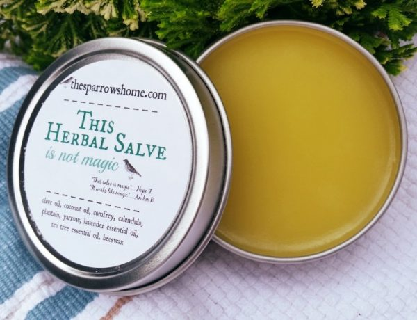 This Herbal Salve is made with simple ingredients in small batches. You'll want one with you all the time!