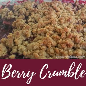 Not quite a crisp. Not quite a cobbler. I'm calling it a berry crumble. Delish!