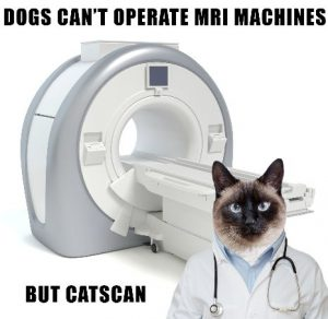 catscan pun