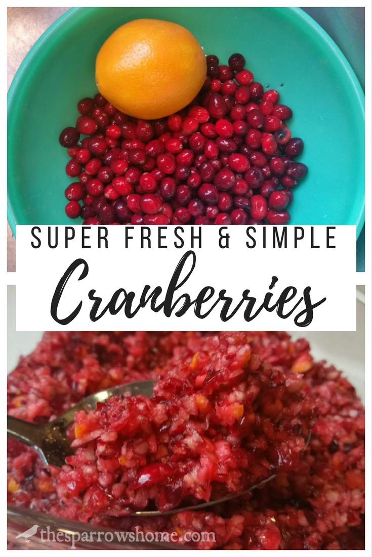 Super fresh and simple orange cranberries recipe. Only three ingredients and no cooking! The leftovers save exceptionally well, too. YUM!