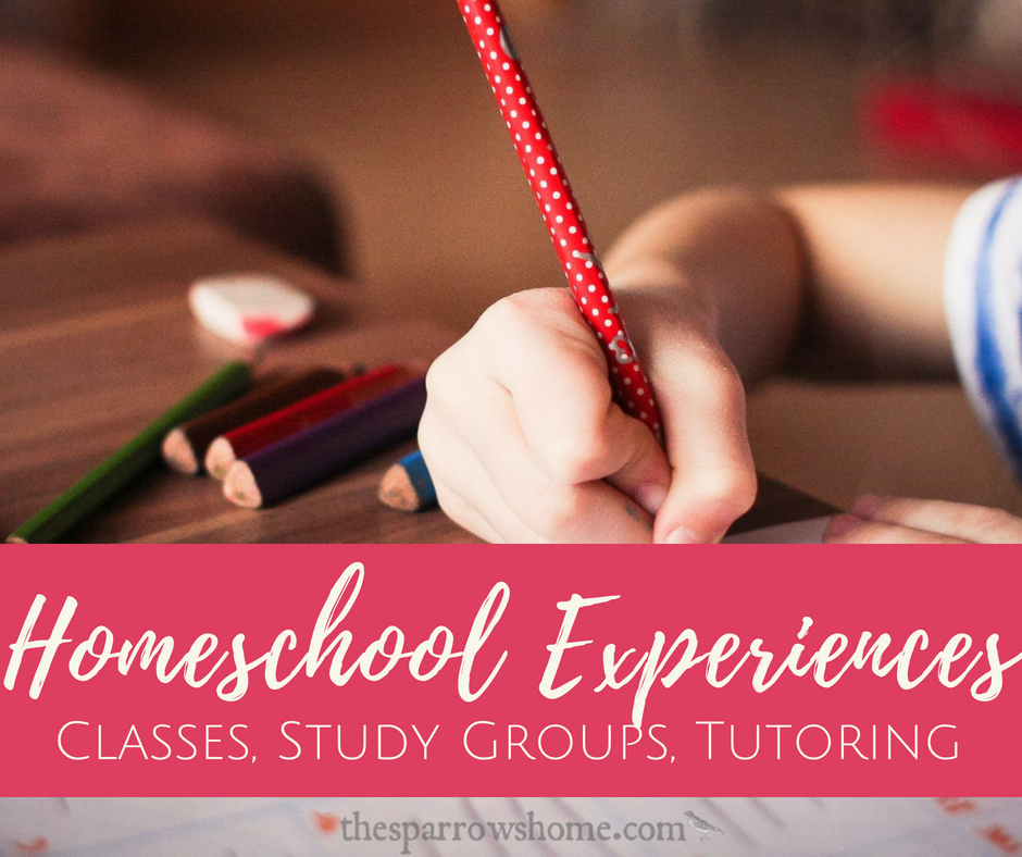 Homeschool Experiences: Classes, Study Groups, Tutoring