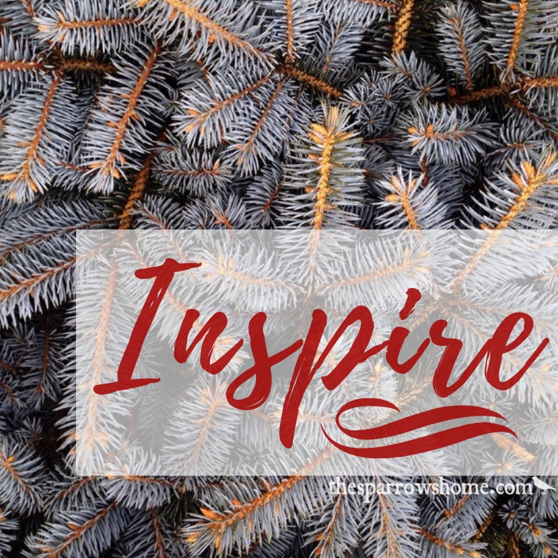 Christmas Scriptures.100 Bible Verses To Inspire You This Christmas And New Year