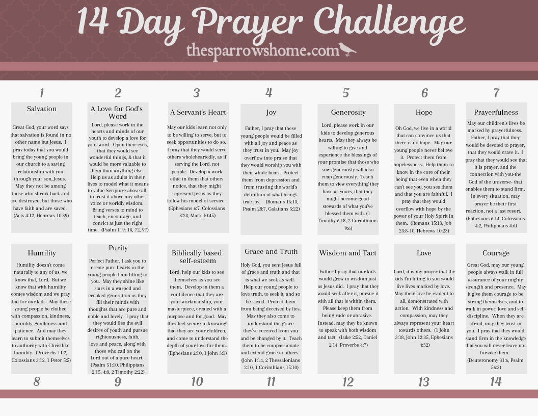 Our kids need champions. Join the 14 day prayer challenge for the young people in your church.