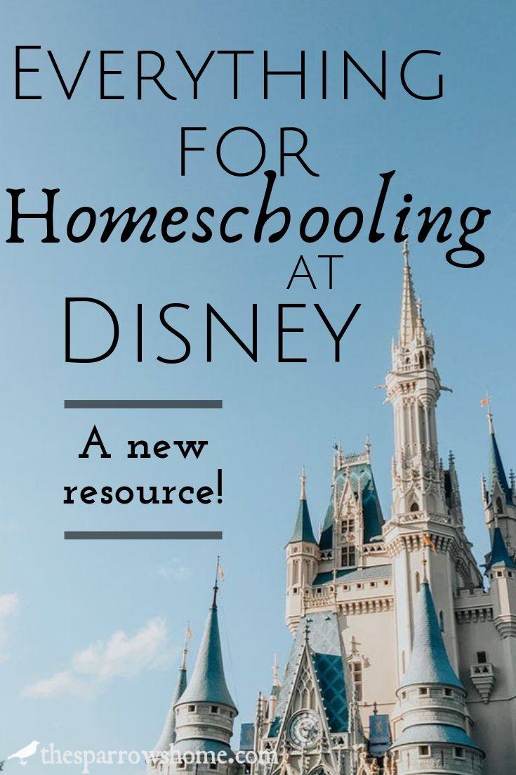 Everything for homeschooling at Disney