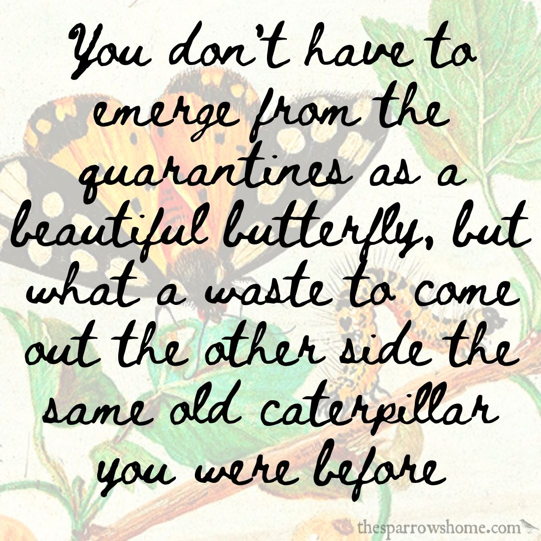 You don't have to emerge from the quarantines as a beautiful butterfly, but what a waste to come out the other side the same old caterpillar you were before
